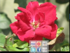Aros Magic Viewer 3.0 Screenshot