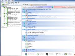 Atlantis Schema Inspector 1.0.646 Screenshot