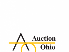 Auction Ohio 1.0.0 Screenshot