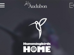 Audubon Hummingbirds at Home 2.1.2 Screenshot