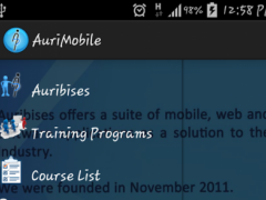 Auribises Educational Services 1.0 Screenshot