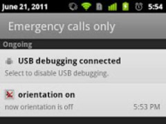 Auto Orientation Setting 1.1 Screenshot