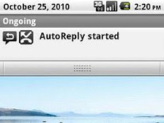 AutoReply 0.2 Screenshot