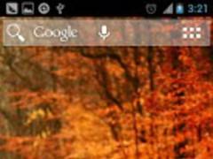 Autumn Nova/Apex/Adw Theme 1.5 Screenshot