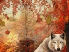 Autumn Wolves Live Wallpaper 1.1 Screenshot