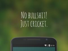 Awkward Cricket Sound 1.0 Screenshot