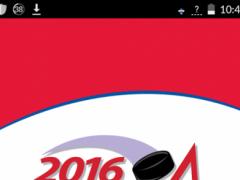AYHL All Star Game 1.0.14 Screenshot