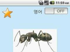 Baby English and Insect 2.1.0 Screenshot