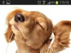 Baby Dogs Live Wallpaper 2.0 Screenshot