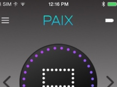 BACKPAIX 1.1 Screenshot