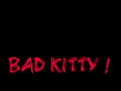 Bad Kitty ! 1.0 Screenshot