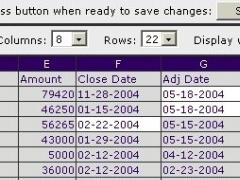 BadBlue Excel Web Spreadsheet Collaboration Server 2.72b Screenshot