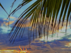 Bahama Sun 4.9.912 Screenshot