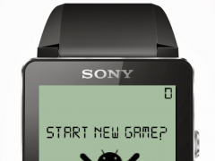 Ball Game for Smartwatch 2 1.3.0 Screenshot