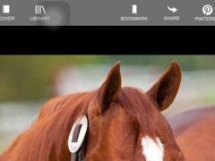 Barrel Horse News The Stallion Register 3.2.2 Screenshot