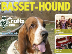 BASSET HOUND MAGAZINE 1.2 Screenshot