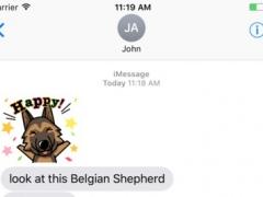 Belgian Shepherd Dog 1.0 Screenshot