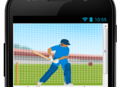 Superb Cricket Games 5.459 Screenshot