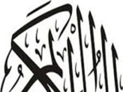 Best Quran Reciters 1 Screenshot