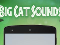 Big Cat Sounds 1.0.12 Screenshot