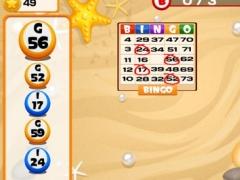 Bingo Bash Balls Pro 1.0 Screenshot