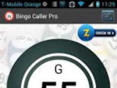 Bingo Caller Free 1.12 Screenshot