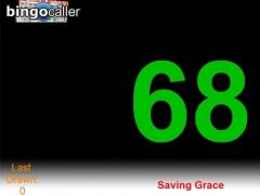 Bingo Caller 1.36 Screenshot
