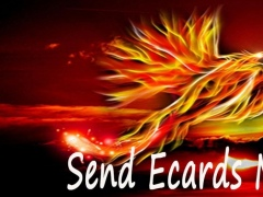 Bird Gallery Greeting Ecards 2 1.0 Screenshot
