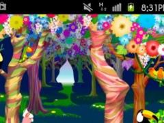 bird paradise Theme 1.0 Screenshot