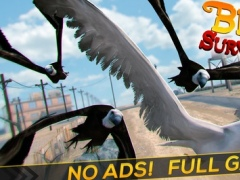 Bird Survival | Wing Sky Fly Tiny Simulator Game For Pros 1.0.0 Screenshot
