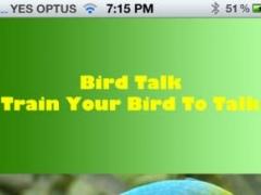 Bird Talk Train Your Bird To Talk 1.0 Screenshot