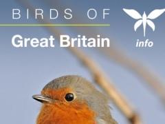 Birds of Great Britain - a Sunbird field guide 1.6.1 Screenshot
