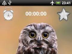 Birds Sounds Relax and Sleep 1.07 Screenshot