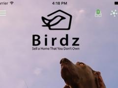 Birdz 1.0 Screenshot