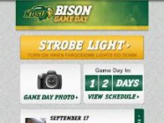 Bison Game Day 2.0 Screenshot