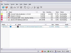 BitHit 4.1.0 Screenshot