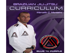 BJJ BLUE-PURPLE L.1 JIU JITSU 1.0 Screenshot