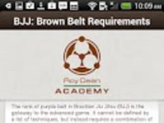 BJJ Brown Belt Requirements 1.0.0 Screenshot