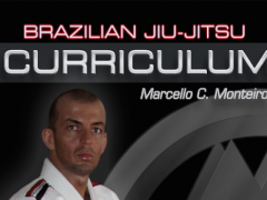BJJ BROWN-BLACK L3&4 Jiu Jitsu 1.0 Screenshot