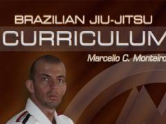 BJJ PURPLE-BROWN 1&2 Jiu Jitsu 1.0 Screenshot