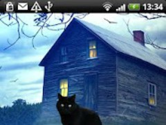 Black Cat Sticker 1.0 Screenshot