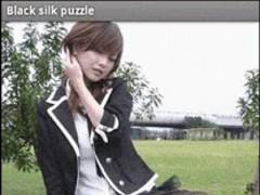Black silk puzzle 2.0 Screenshot