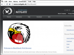 BlackHawk Web Browser 3.0.205 Screenshot