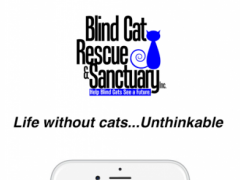 Blind Cat Rescue & Sanctuary 1.0.3 Screenshot