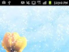 Blue sky & tulip wallpaper 1.0 Screenshot