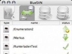BlueSVN  Screenshot