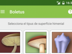 Boletus - mushroom search 3.0.6 Screenshot