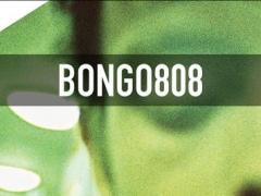 BONGO808 1.0 Screenshot