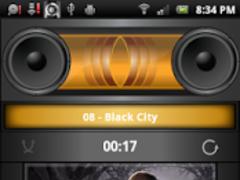 Boom Player Metallic Gold Skin 1.1 Screenshot
