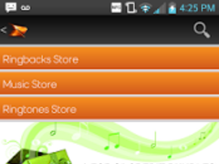 Boost Mobile Music Store 1.1.29 Screenshot